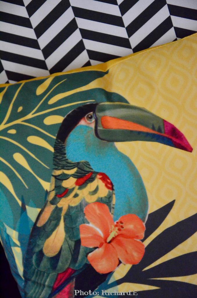 Coussin toucan hannah elizabeth interior design