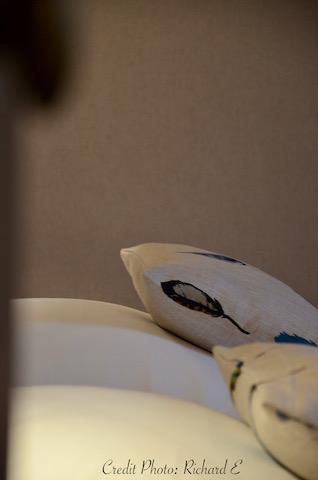Oreillers et coussin plumes hannah elizabeth interior design